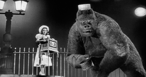 Top 10 Monkey Movies