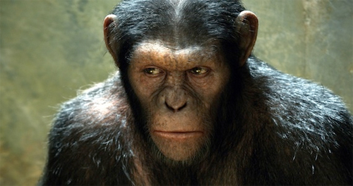top 10 monkey movies Rise of the Planet of the Apes