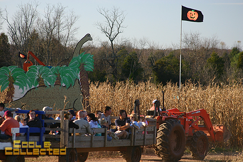 cox farms hayride