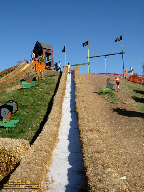 cox farms giant slide
