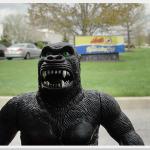 King Kong World Tour — York, Pennsylvania